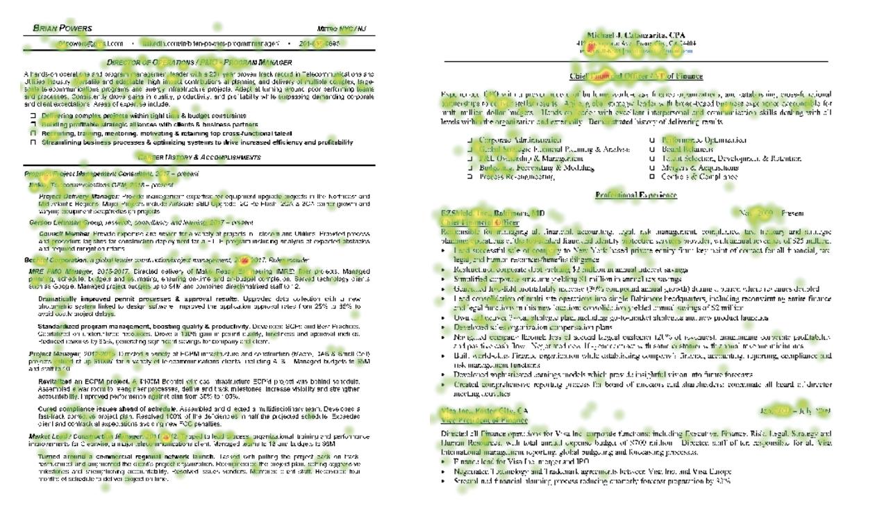 The Ladders - Resume Eye Tracking Pattern